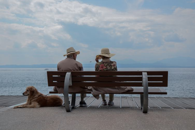 Couple of Elderly People Sitting at the Bench with their Golden Retriever