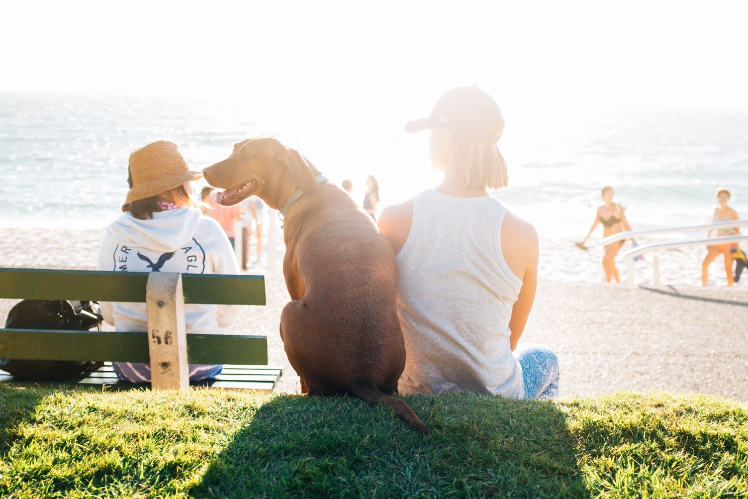 Woman Wearing a Cap and a T-shirt Sitting on the Grass Near the Beach with her Dog