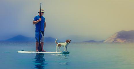 Surfing with Man's Best Friend - Dog
