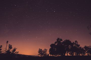 Trees and People Silhouettes Against a Starry Sky