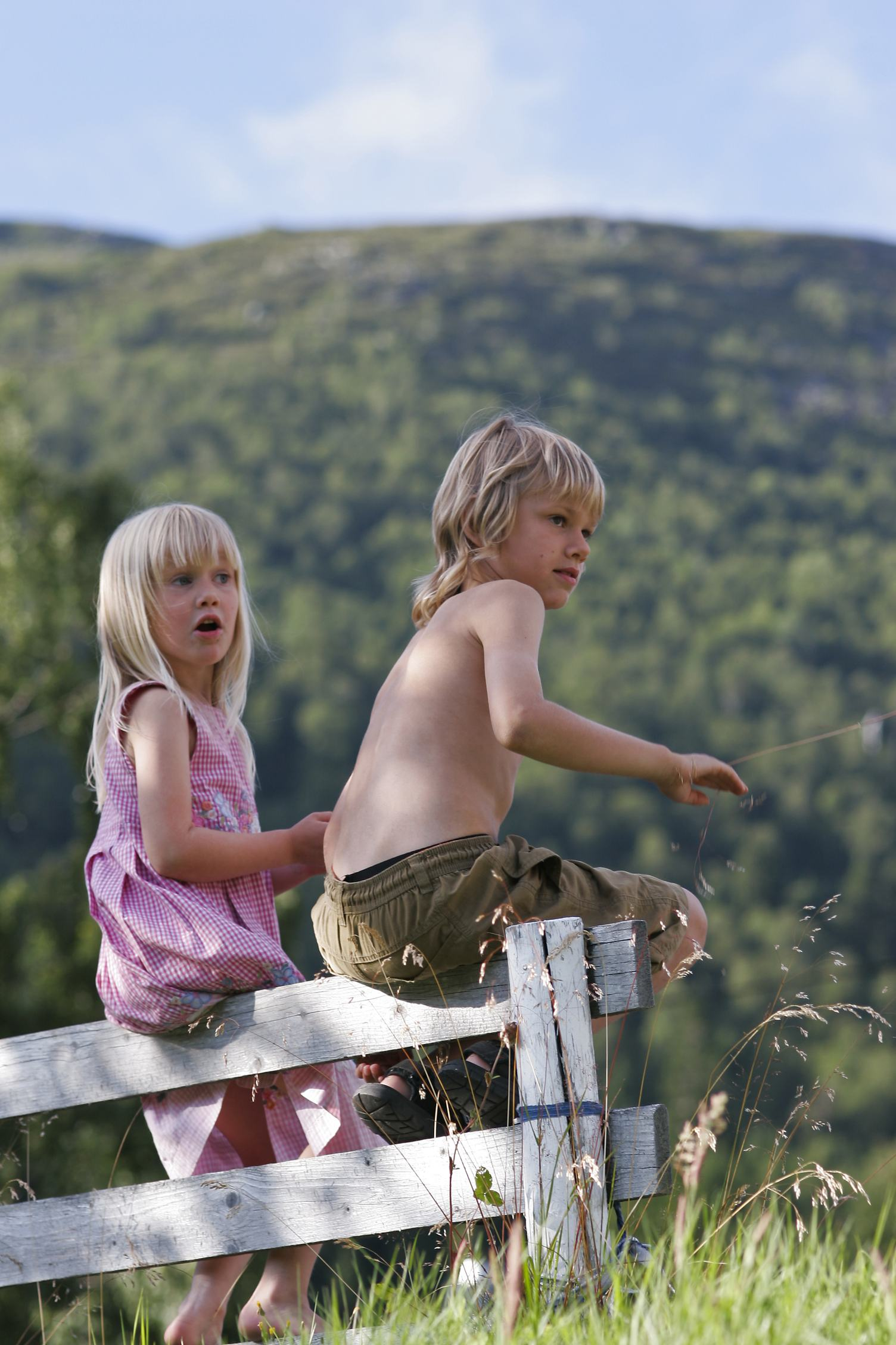Girl and Bay Sitting on the Wood Fence in the Summer Time