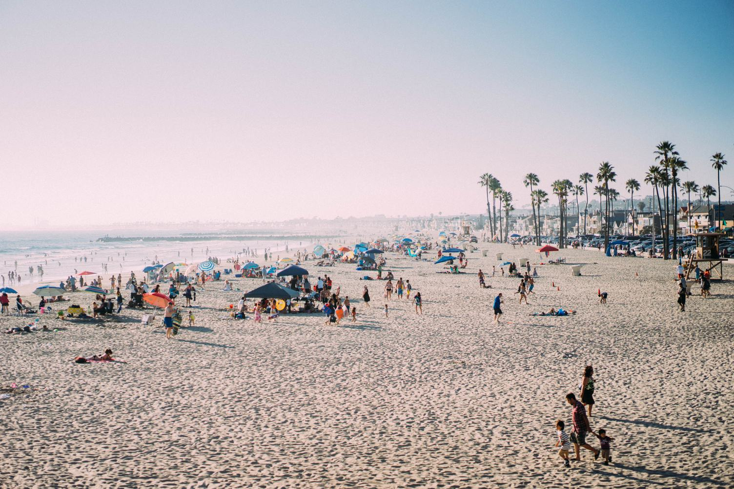 People on the Beach and Palm Trees in the Distance