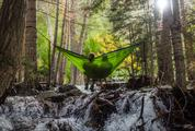 Relaxing in Hammock in the Forest