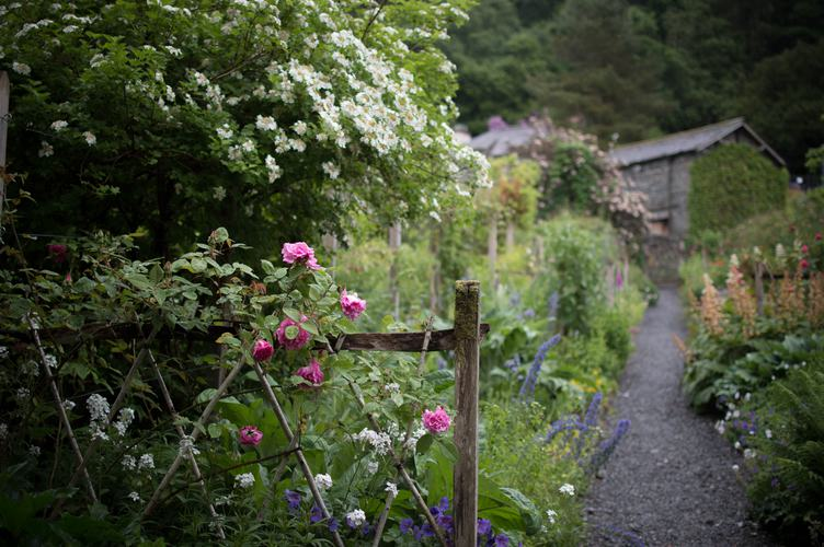 Wild Blossoming Garden with a Cottage