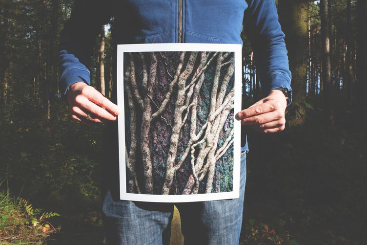 Man Holding a Printed Photo of Trees