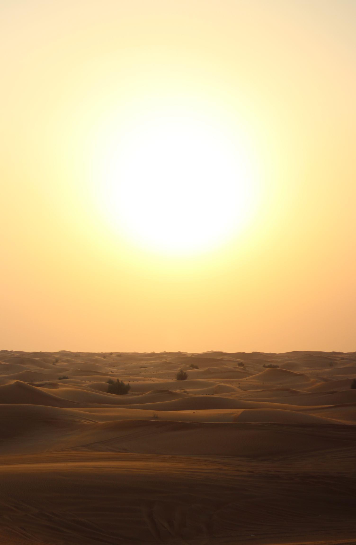 Desert Evening Glowing by the Big Sun