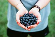 Woman with Handful of Fresh Blueberries