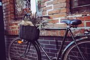 City Bicycle with Basket in Front of the Old Brick Wall