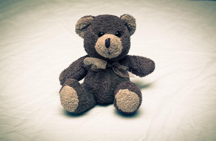 Cute Teddy Bear Sitting