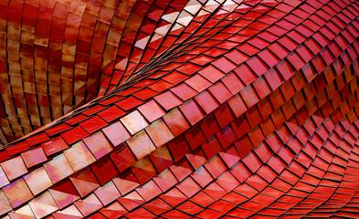 Futuristic Red Roof