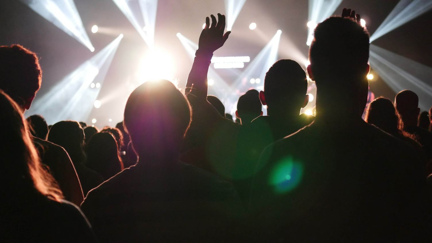 Rear View of an Audience at a Music Concert