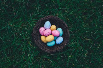 Easter Eggs in a Nest on the Grass