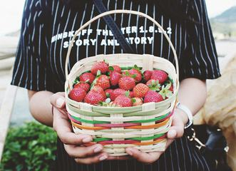 Strawberries in a Basket in the Hands of a Woman