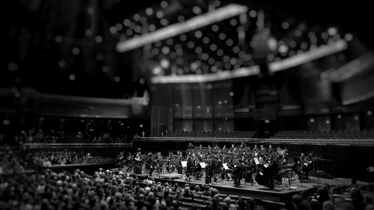 Symphony Orchestra in the Concert Hall