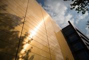Modern Gold Facade Tiles reflecting Tree Branches