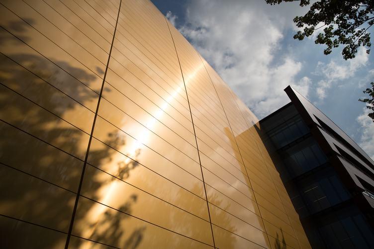 Modern Gold Facade Tiles reflecting Tree Branches