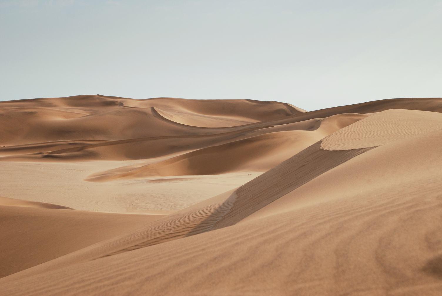 Landscape of Desert Dunes