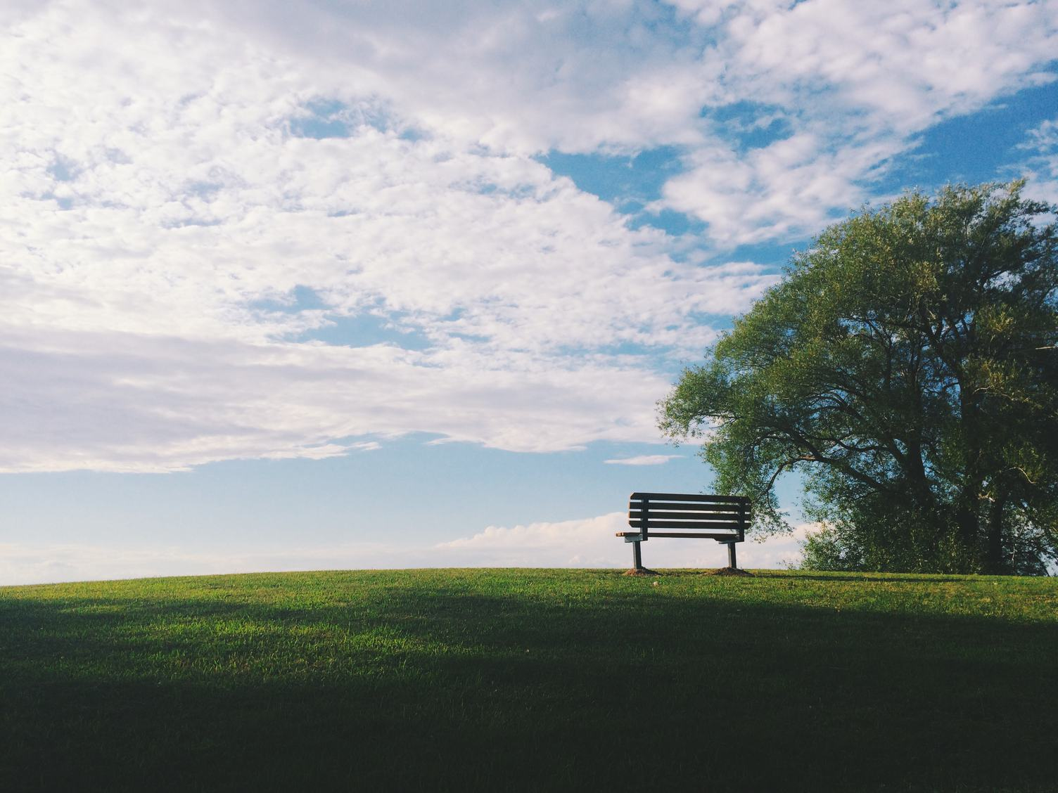 A Wooded Bench on a Grassy Hill