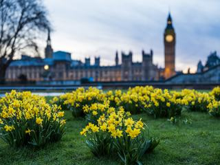 Spring Sunny Evening in Westminster, London