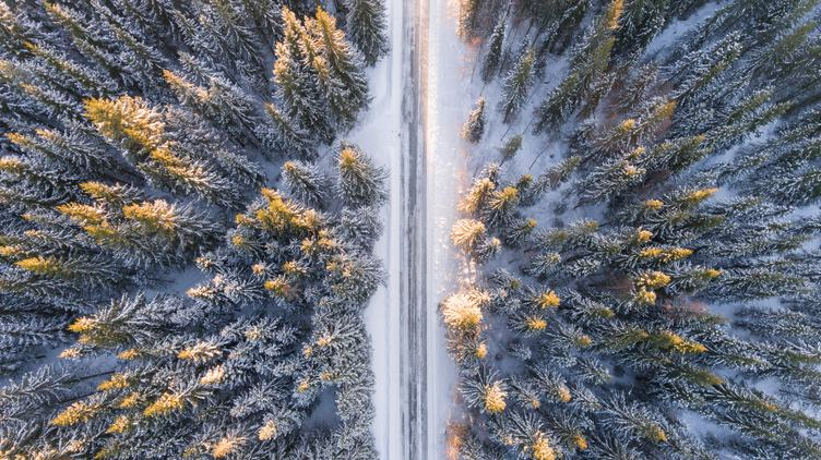 Snowy Forrest with a Road Captured from Above