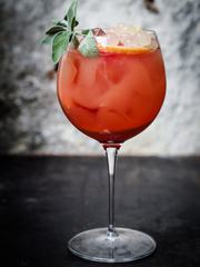 Cold Refreshing Cocktail with Mint