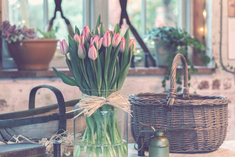 Spring Tulips Bouquet in Front of the Window
