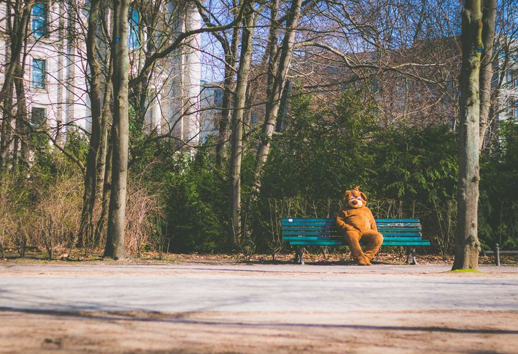 Men in Bear Costume Sitting in Park on a Wooden Bench