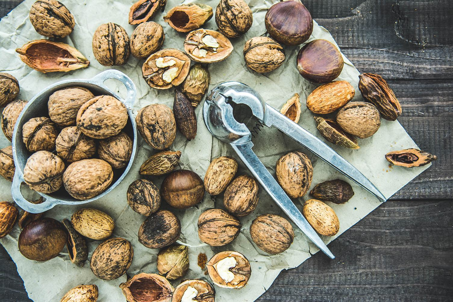 Nuts of Various Kinds and Steel Nutcracker
