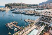 Luxury Yachts in the Marina