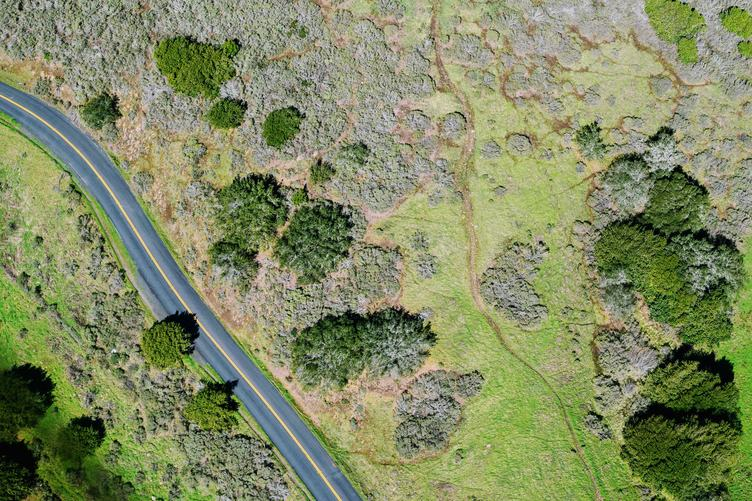 Aerial View of the Road in the Green Valley