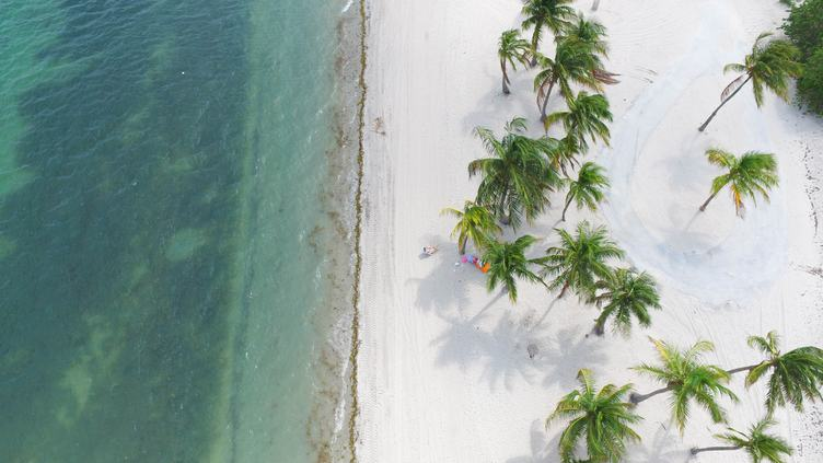 Free Photo: View Of A Tropical Beach From Above