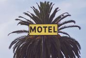 Motel Sign with Palm Tree