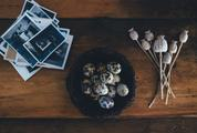 Quail Eggs in a Bowl on a Wooden Background
