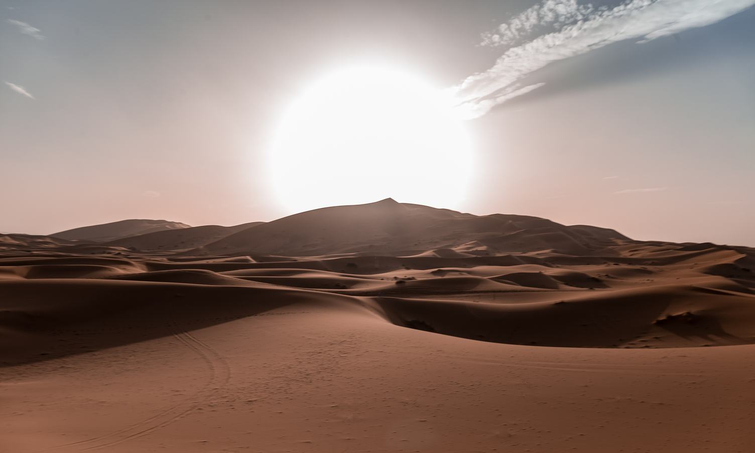 Beautiful Sand Dunes in the Desert