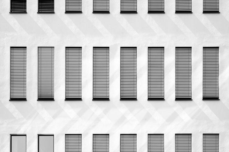 Facade with Windows