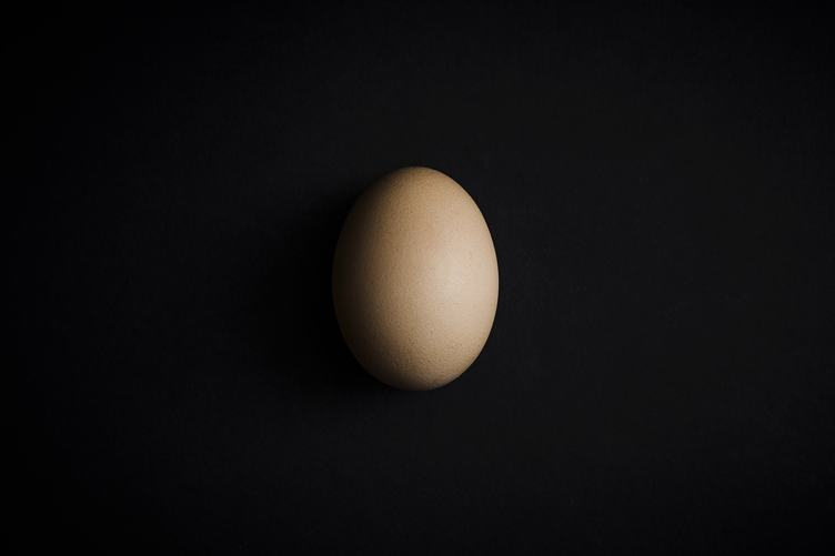 Single Egg on Black Background