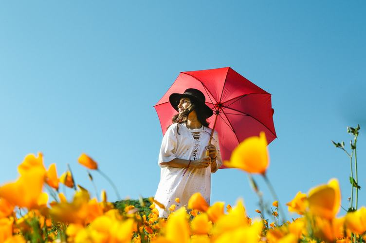Woman Walking Through a Yellow Poppy Field Holding Red Umbrella