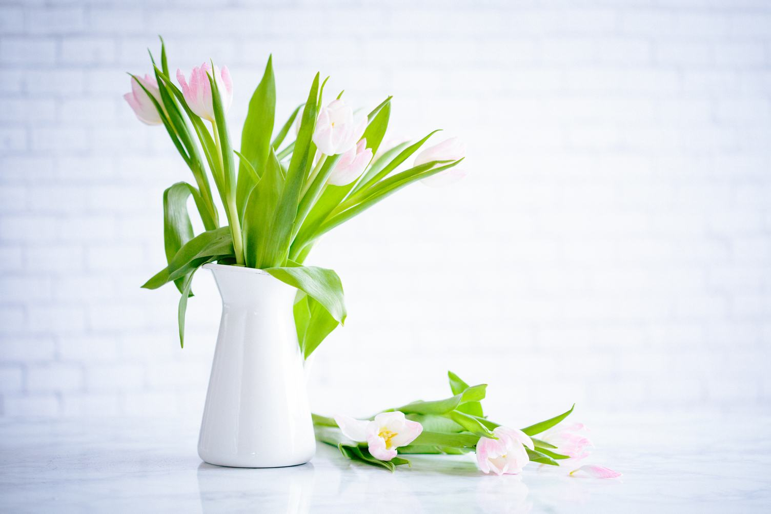 Vase with Bouquet of Tulips on Brick Wall Background