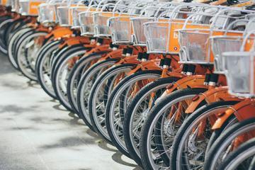 Rental City Bikes
