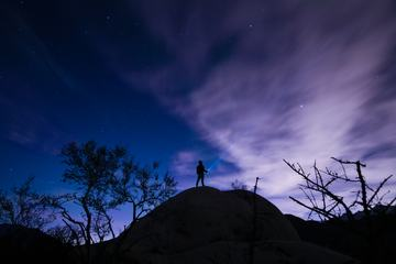 Night Sky with Stars, Trees and Silhouette of a Standing Alone Man