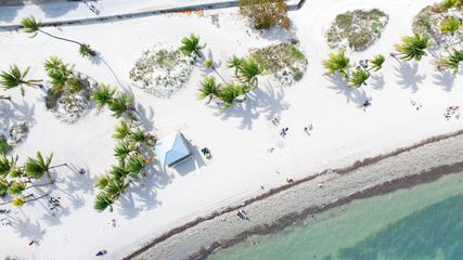 Top View of a Paradise Beach
