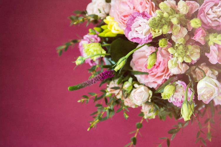 Rich Bunch of Pink Flowers and Green Leaf against Burgundy Background
