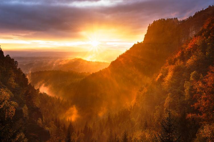 Beautiful Autumn Forest Mountain Landscape at Sunset