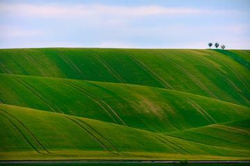 Rural Landscape with Green Filed Hills