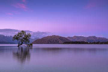 Violet Mountain Landscape with Lake and Tree in the Water