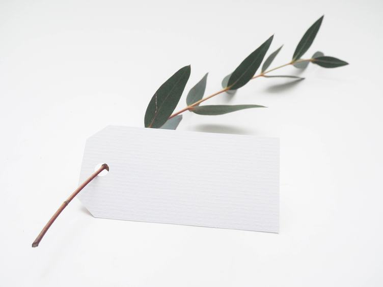 Blank White Tag with Green Twig