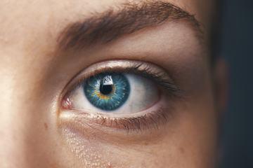 Close up of a Blue Human Eye
