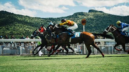 Horse Racing on Hippodrome Track