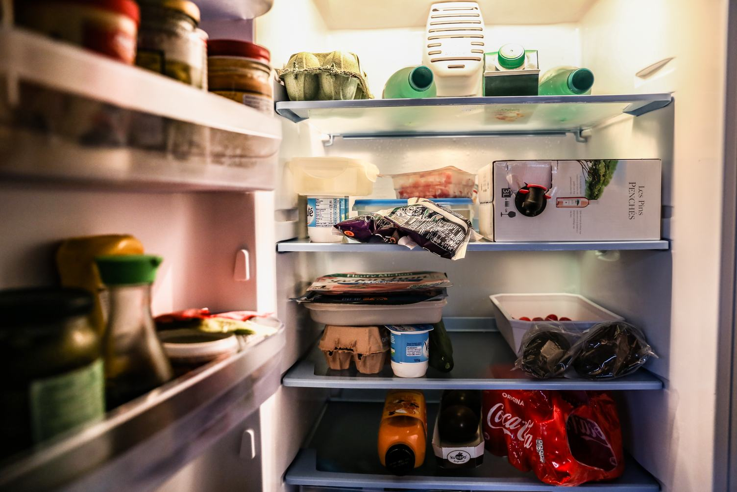 Inside of Refrigerator Filled with Food