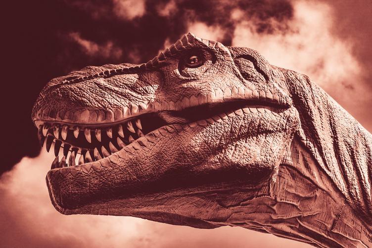 Head of Tyrannosaurus Rex